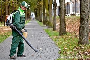 leafblowing-man